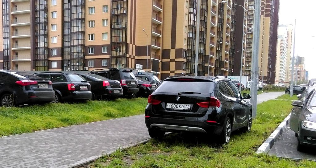 avto-na-gazone-1